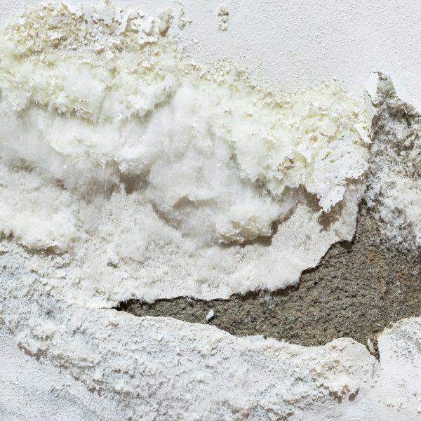 inflitracao-parede-mofo-politintas