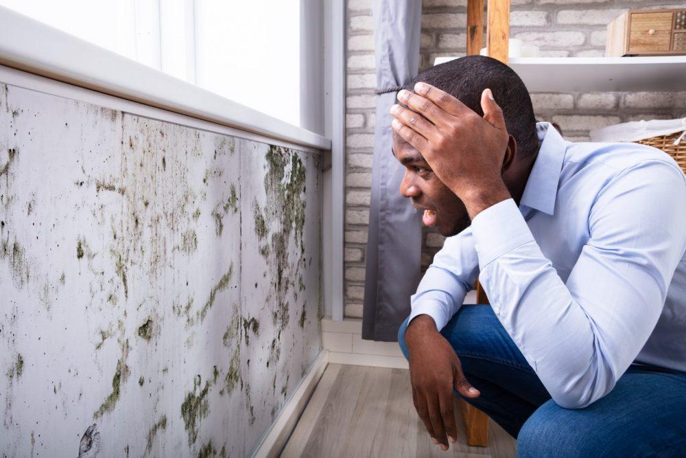 Um homem jovem avalia parede com marca de infiltração